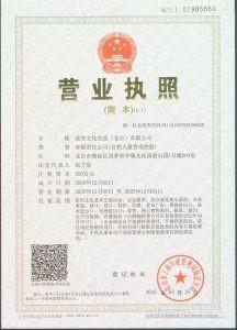 水印 216x300 - 图书营业执照-水印